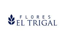 FLORES EL TRIGAL - Colombia